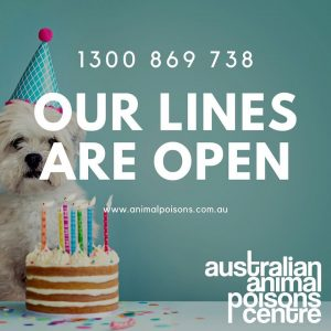 pet poison helpline open